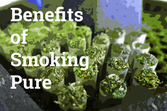 Benefits of smoking pure weed joints