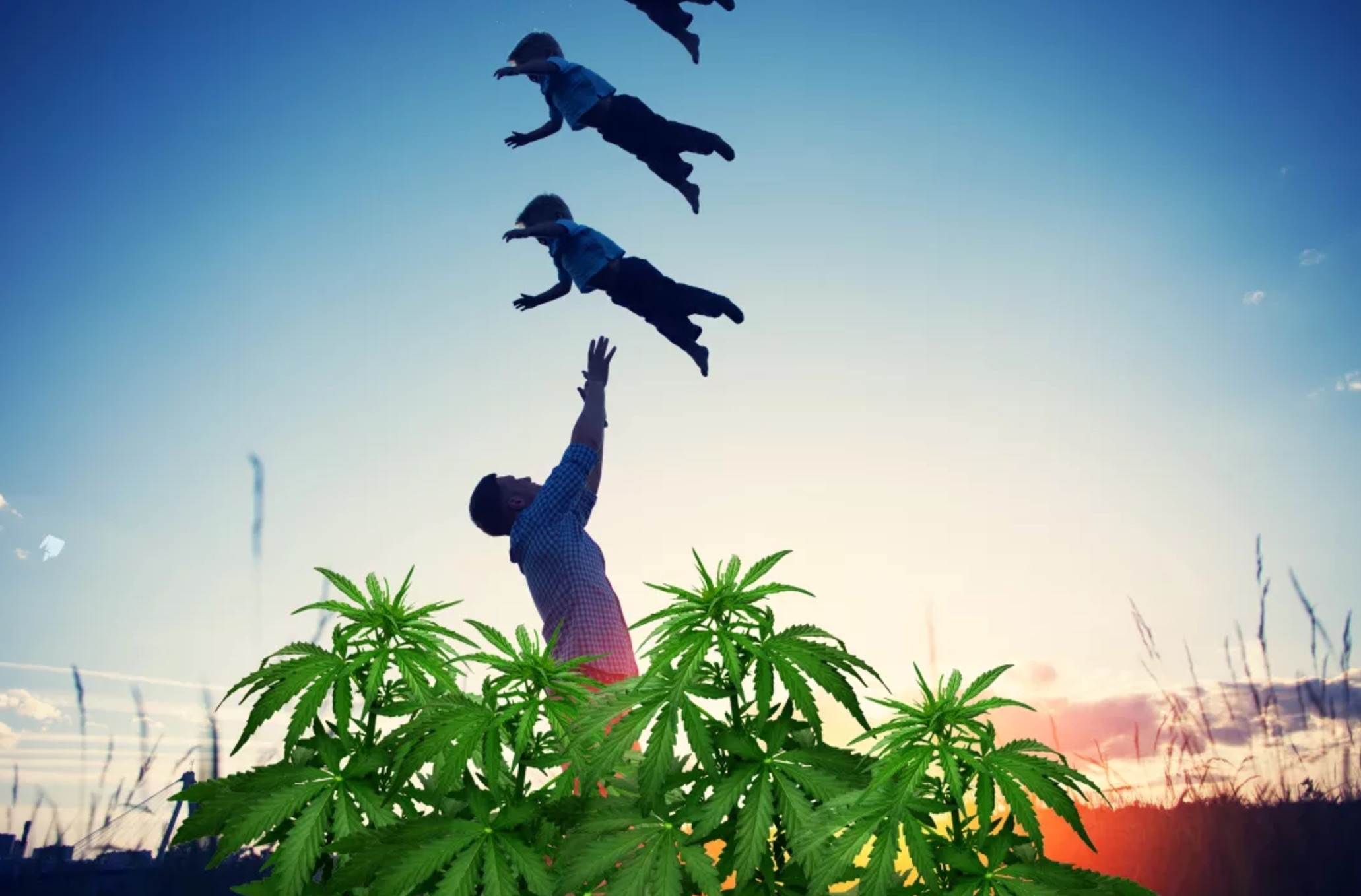 parenting with cannabis father happy with kids