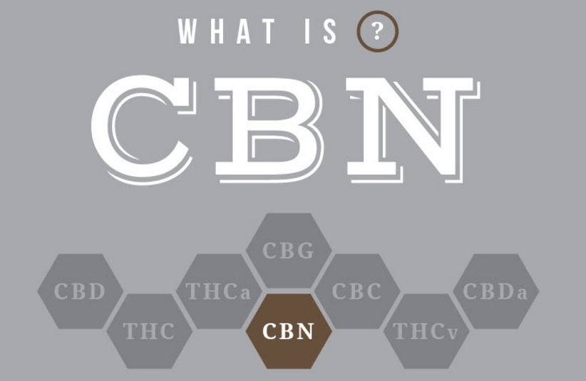 what is CBN best coffeeshop amsterdam