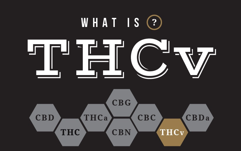 what is THCv coffeeshopbestfriendsamsterdam bestweedamsterdam